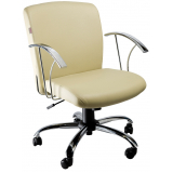 onde encontro cadeira diretor para escritório no Jardim dos Camargos